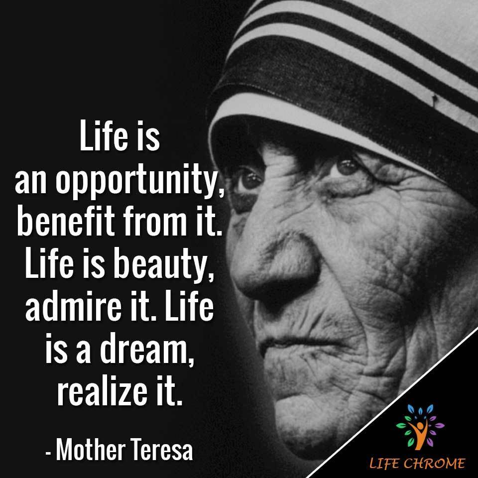 """Life is an opportunity, benefit from it. Life is beauty, admire it. Life is a dream, realize it."""